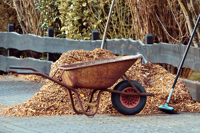 Is Autumn the Right Time for Mulching?