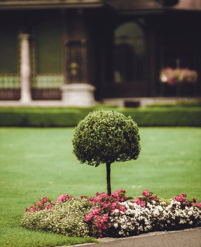Keep Your Property Pristine With Landscape Maintenance Services