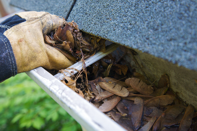 Invest in Gutter Cleaning Service This Fall to Protect Your Home