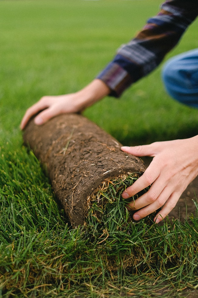 When is the Right Time for Sod Installation?